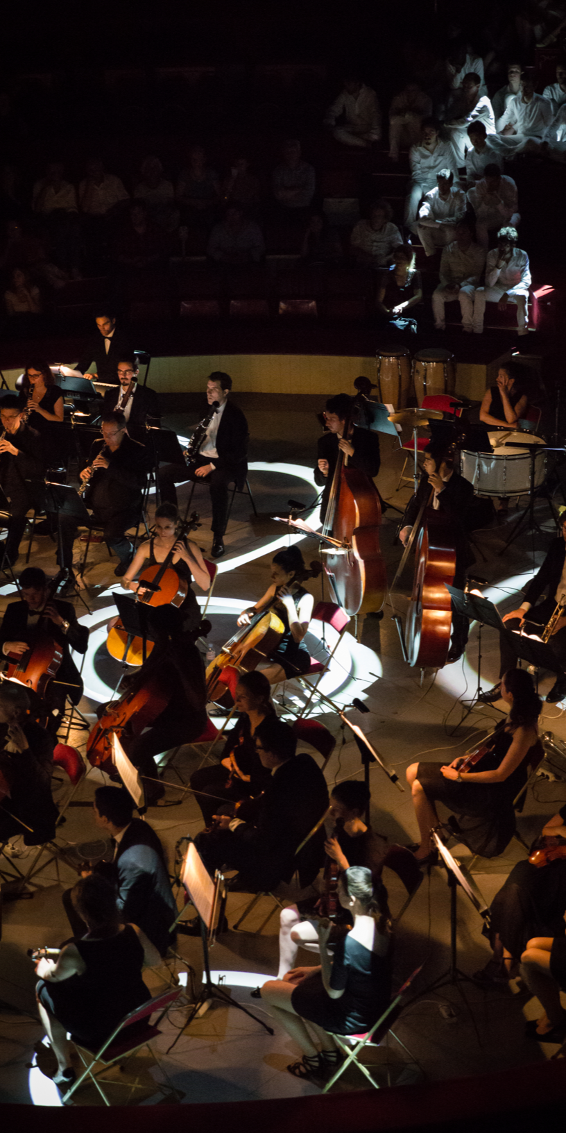 Orchestre@2x